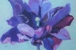 Purple Tulip l