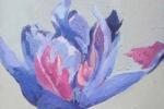 Purple Tulip lV