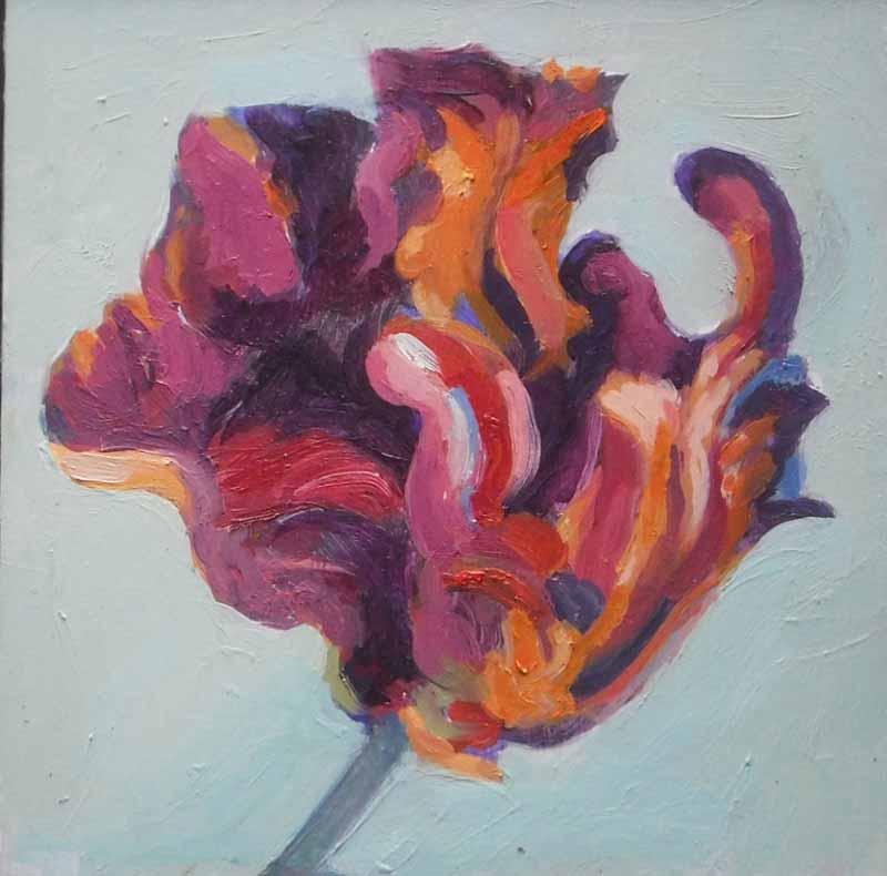 Rembrandt Tulip lV