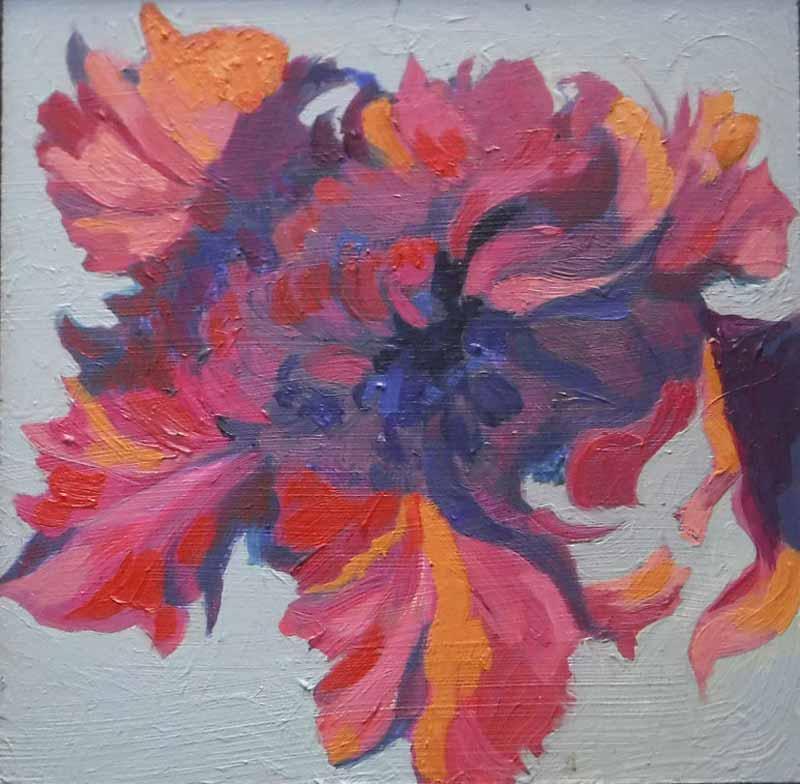 Rembrandt Tulip ll