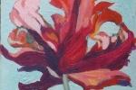 Rembrandt Tulip lll