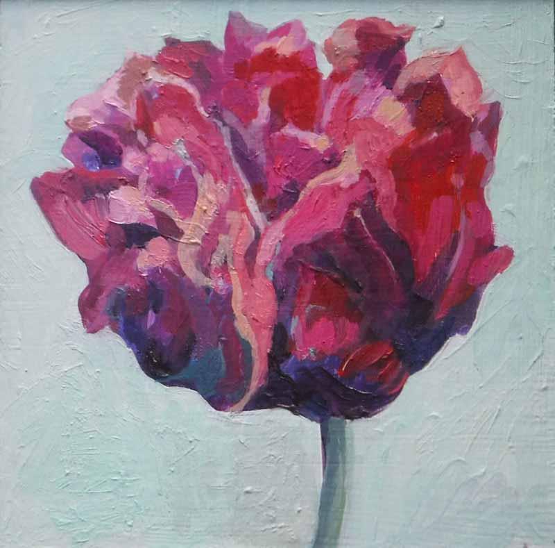 Rembrandt Tulip Vlll