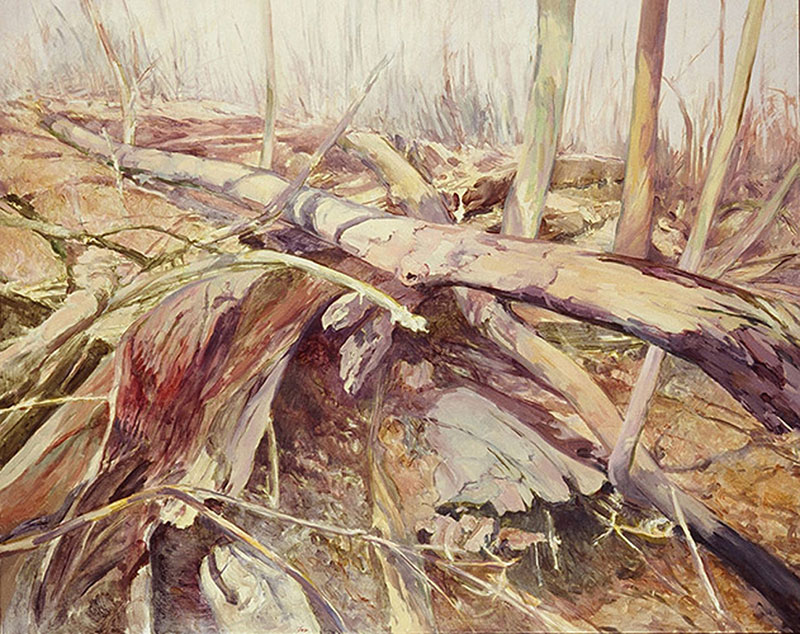 Wissahickon Woods